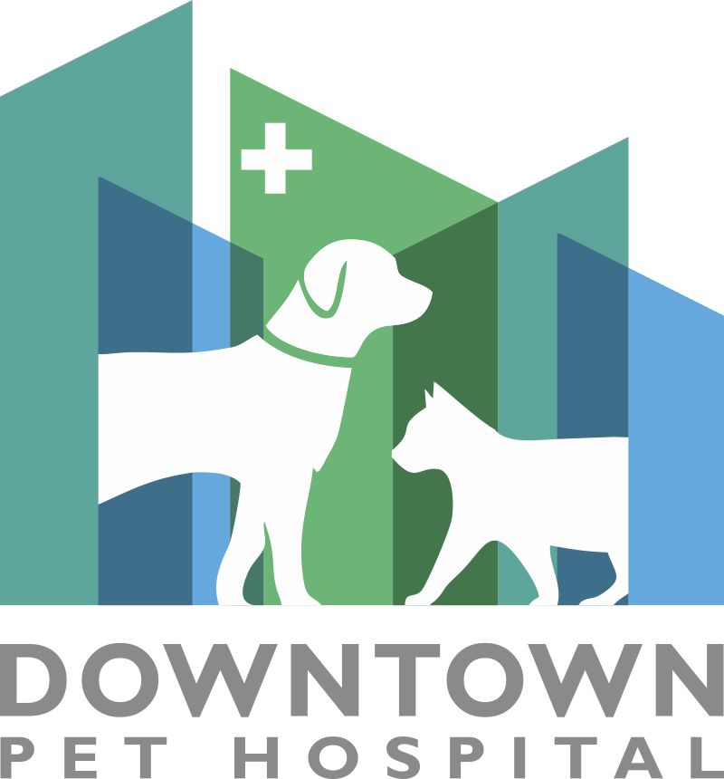Downtown Pet Hospital - Logo